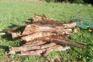 Logs for hugelkultur bed